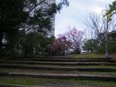 20180121二叭子公園:DSCF4021.JPG