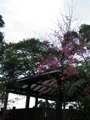 20180121二叭子公園:DSCF4006.JPG