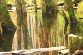 20130814-水漾森林:IMG_5611.JPG