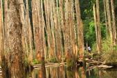 20130814-水漾森林:IMG_5617.JPG