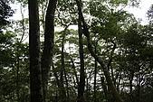 那結山:IMG_1452.jpg