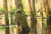 20130814-水漾森林:IMG_5609.JPG