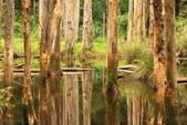 20130814-水漾森林:IMG_5629.JPG
