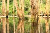 20130814-水漾森林:IMG_5619.JPG