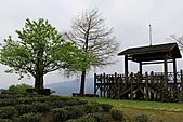 太平山-20110325:_MG_0095.JPG