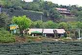 太平山-20110325:_MG_0091.JPG