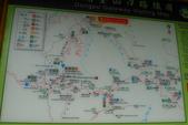 20121010-東埔-和社:L1030279.JPG