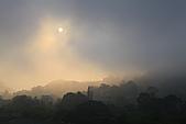加里山-一葉蘭:_MG_0427.JPG