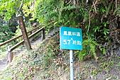 溪頭-20110416:_MG_0990.JPG
