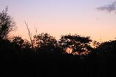 寶二水庫的日出:_MG_1406.JPG