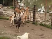 20110610宜蘭一日遊:1552591680.jpg