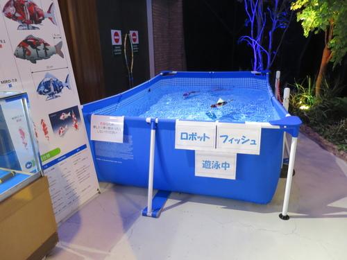 2017-01-21-14h28m30.JPG - 2017北九州