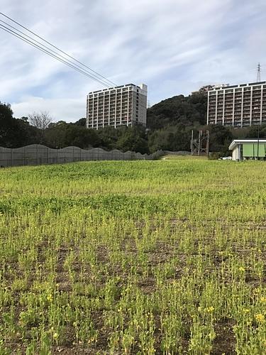 2017-01-21-12h56m38.JPG - 2017北九州
