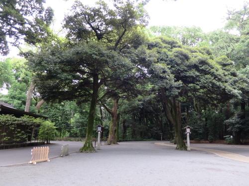 2016-06-15-17h00m01.JPG - 東京(2)