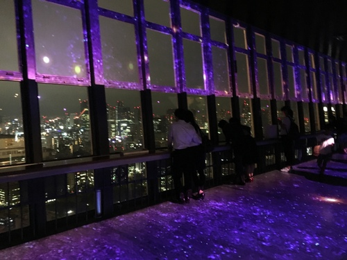 2016-06-15-21h06m05.JPG - 東京(2)