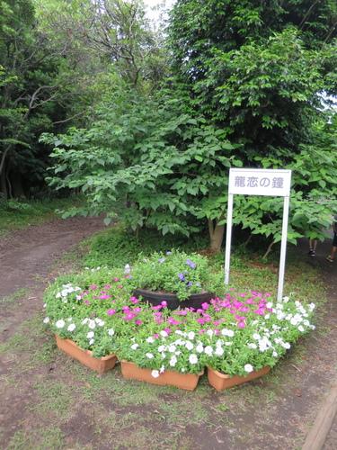2016-06-17-17h01m39.JPG - 東京(2)