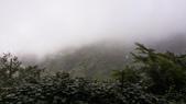 拉拉山:20140708_061831.jpg