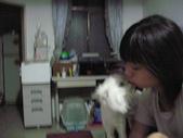 我的天使MIU MIU帥到掉渣!!:1299861664.jpg
