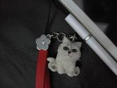 我的天使MIU MIU帥到掉渣!!:1299856622.jpg