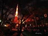 :東京夜景1