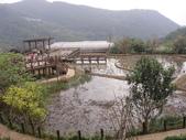白石湖+大湖+水管步道+文大+故宮:DSC08562.JPG