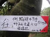 天元宮+竹子山+阿里磅瀑布:DSC00769.JPG