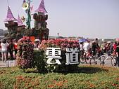新社花海:DSC08835.JPG