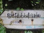 天元宮+竹子山+阿里磅瀑布:DSC00770.JPG