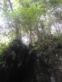 馬武督探索森林(憶之旅~103.07.28.(一):DSC03261.JPG