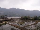 白石湖+大湖+水管步道+文大+故宮:DSC08565.JPG