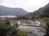 白石湖+大湖+水管步道+文大+故宮:DSC08558.JPG