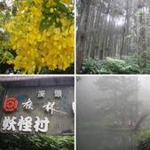 溪頭森林遊樂區~鴻達旅遊~2014/6/15(日):相簿封面
