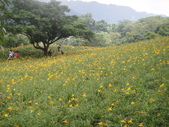 新社沐心泉農場(鴻達旅遊)103.05.26.(一):DSC01819.JPG