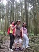 馬武督探索森林(憶之旅~103.07.28.(一):DSC03230.JPG