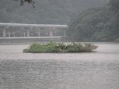 白石湖+大湖+水管步道+文大+故宮:DSC08680.JPG