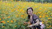 快樂回憶:知卡宣森林公園