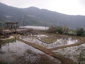 白石湖+大湖+水管步道+文大+故宮:DSC08566.JPG