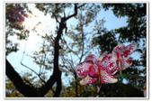 西元2014-04-12紙風車368鄉鎮市區兒童藝術工程佳冬鄉公演篇:0412紙風車 (16).JPG