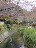 2015-10月-京都:哲學之道