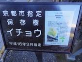 2014-12月-京都-5-:IMGP1799.JPG