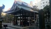 2014-12月-京都-5-:DSC_3752.JPG