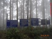大原山、鳳崗林道、南鳳山、六龜警備道、南真我山下茂林:DSC00094.JPG
