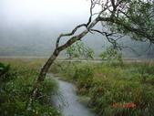 御恩山.神祕湖20131012:御恩山.神祕湖20131012 020.jpg