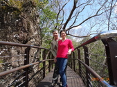 羅馬公路、拉拉山〈巴陵古道、櫻花、神木〉之旅20150224:DSC06028.JPG