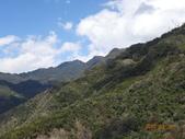 羅馬公路、拉拉山〈巴陵古道、櫻花、神木〉之旅20150224:DSC06034.JPG
