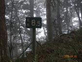 大原山、鳳崗林道、南鳳山、六龜警備道、南真我山下茂林:DSC00093.JPG