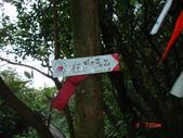 三三O行縱走20131109:三,三.O行走 007.jpg
