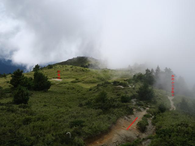 IMG_1413.JPG - 大霸尖山、小霸尖山、伊澤山、加利山(大霸群峰)20190902