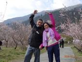 104年武陵農場櫻花季一日行20150211:DSC05483.JPG