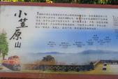 小笠原山、對高岳山、眠月線半程、阿里山園區O型走(第三天)20190716:IMG_9624.JPG